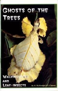 Bug Assassin (Ghosts of the Trees: Walkingsticks and Leaf-Insects)