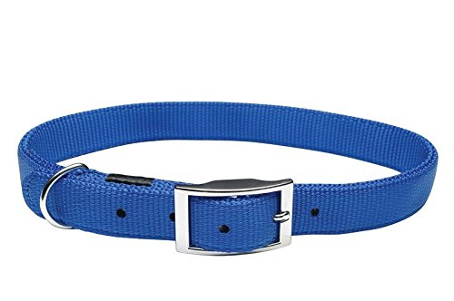 Dogit Nylon Single Ply Dog Collar with Buckle, X-Large, 20-Inch, (Single Ply Dog Collar)