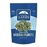 Thousand Lakes Freeze Dried Fruits and Vegetables - Broccoli Florets 1.2 ounces   100% Florets - No Stems   No Salt Added