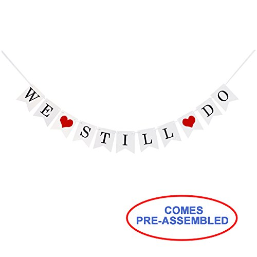 (Anniversary Party Decorations - We Still Do Banner Hanging Sign Photo props,Vow Renewal)