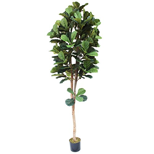 8' Fiddle Leaf Fig Silk Tree w/Pot -Green by SilksAreForever