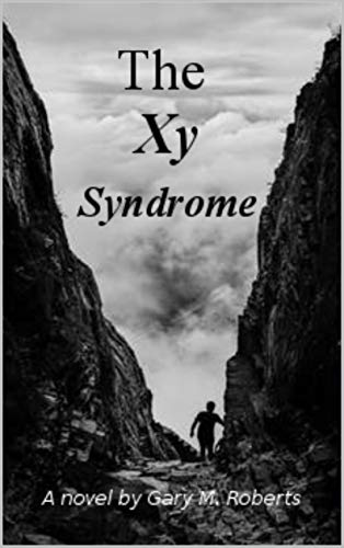 The XY Syndrome by [Roberts, Gary M.]