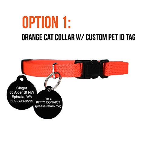 Picture of Kitty Convict Cat ID Collars
