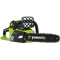 Greenworks 16