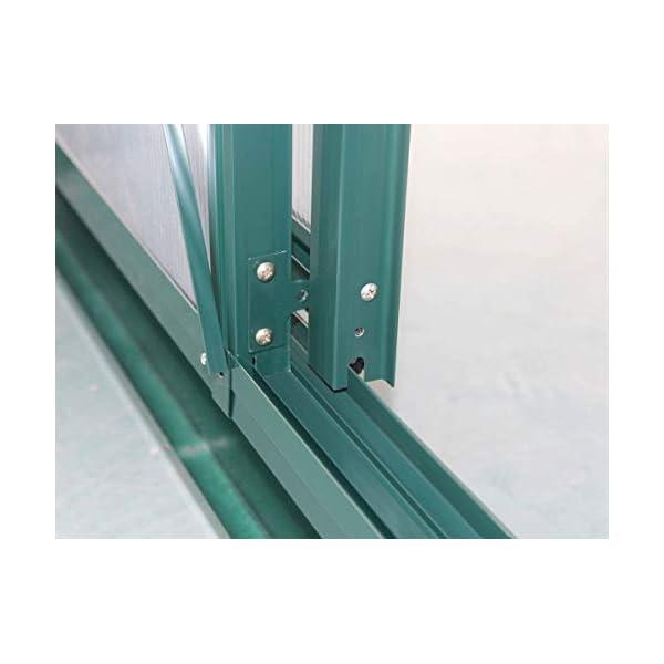 Viva Green 1299_ 69183Dahlia Serra da Giardino policarbonato/Plastica Verde Albero 13,29M² 430x 309x 248cm 3 spesavip