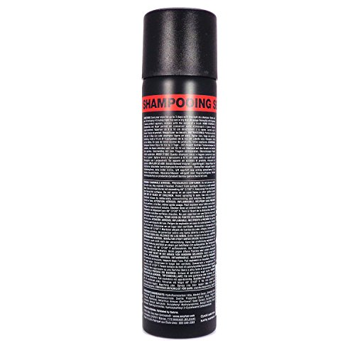 Sexy Hair Concepts Style Sexy Hair, H2NO 3 Day Style Saver Dry Shampoo, 5.1 ounces by Sexy Hair (Image #1)