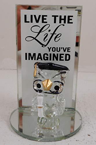(Live the Life Graduation Glass Owl Figurine (Glass Owl, Mirror Back & Base))