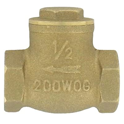 """W.E. Anderson® Brass Flap Check Valve, BFC-01, 3/4"""" Pipe Size from Dwyer Instruments, Inc."""