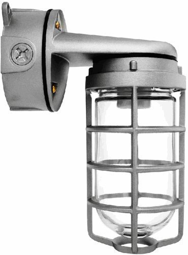 RAB Lighting VXBR100DG Vaporproof VXBR 4'' Wall Bracket with Glass Globe and Cast Guard, A19 Type, Aluminum, 150W Power, 1/2'' Hub, Natural by RAB Lighting