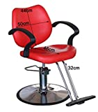 Beauty Style Salon Spa Chair Classic Hydraulic Styling Chair...