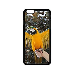 Ready To Fly Parrot Hight Quality Plastic Case for Iphone 6