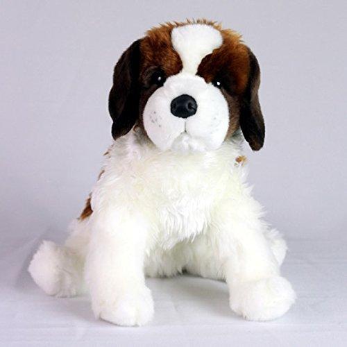 malattie canine legate alla perdita di pesona