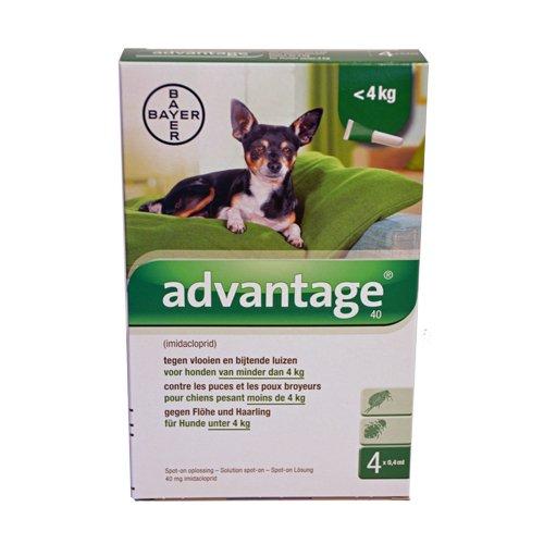 Advantage 40 Hunde 4 Pipetten von 0.4 ml