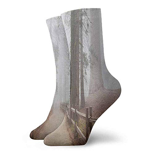 Novelty Funny Socks Yosemite,Evergreen Forest and Walkway in Sequoia National Park Foggy Morning Nature Art,Grey Brown,socks for flats