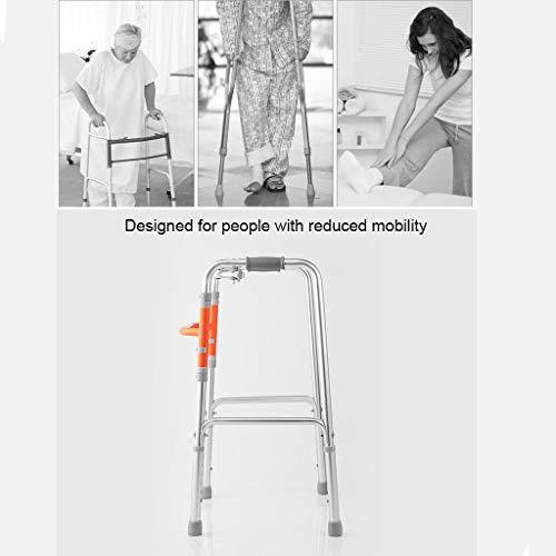 LYXPUZI Anciano Caminante - Caminante de Cuatro Patas Ayuda a ...