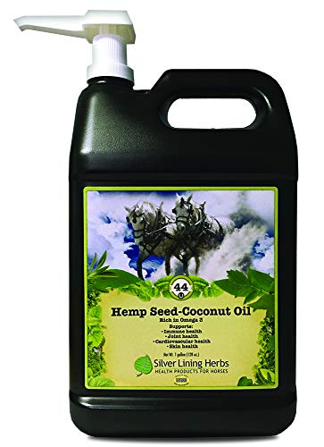Silver Lining Herbs Hemp Seed Oil-Coconut Oil | Source of Omega 3 Fatty Acids and Vitamin E | Supports Horse Health of the Immune System, Joints and Cardiovascular System | 1 Gallon | Made in the USA (Best Oil For Horses Joints)