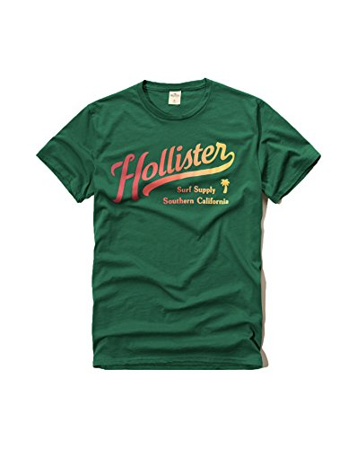 hollister-mens-graphic-logo-t-shirt-large-green-s