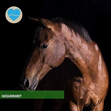 ⭐ EMMA ♥ Vitaminas para caballos I Suplementos ...