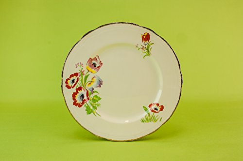 6 Vintage Charming Tulips PLATES Pottery Cake Art Deco Large Cream Alfred Meakin Gift Sandwich Fruit English 1930s LS