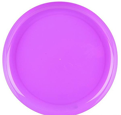 9'' PURPLE BREAK-A-PLATE, Case of 2 by DollarItemDirect