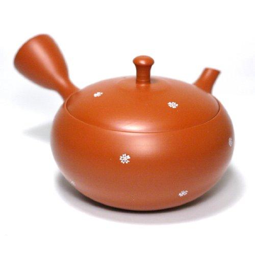 Japanese Teapot Kyusu/tokoname Kiln/potter: Hokuryu