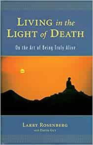 Living in the light book