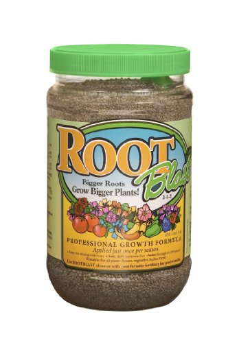 ROOTBlast 2 1 2 Growth Formula 40 Ounce product image