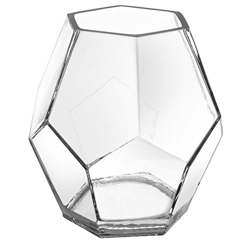 (MyGift 5-inch Clear Glass Hexagon Shape Flower Vase, Tabletop Prism Wedding Party Decor)