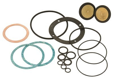 Powers Process Controls 390-302 Powers Gasket & Disc Kit