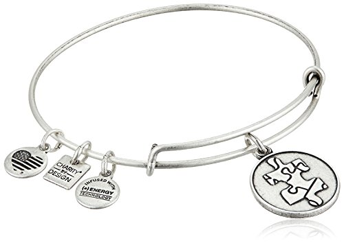 Alex and Ani Charity By Design Piece of The Puzzle National Autism Association Rafaelian Silver Bangle Bracelet -