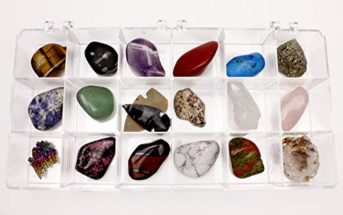 Rock and Mineral Educational Collection & Collection Box -18 Pieces with description sheet and educational information. Limited Edition, Geology Gem Kit for Kids with Display Case, Dancing Bear