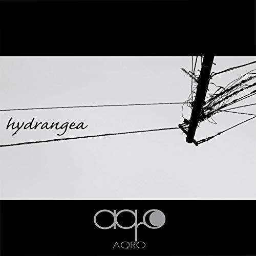 hydrangea (10, 000 rain-drops mix)