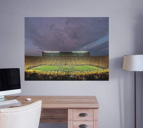 Fatheads NCAA Michigan Wolverines Unisex Michigan Wolverines: Michigan Stadium 'The Big House' MuralofficiallyLicensed Removable Wall Decal, Multicolor, Giant ()