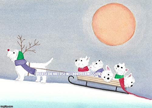 (12 Christmas cards: West highland terrier (westie) family takes a sled ride / Lynch folk art)