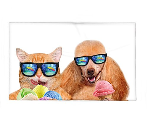 Cool Pop Art Costumes (Interestlee Fleece Throw Blanket Animal Cat Dog Pet with Sunglasses Eating Ice Cream Retro Cool Vintage Pop Artwork Image Multicolor)