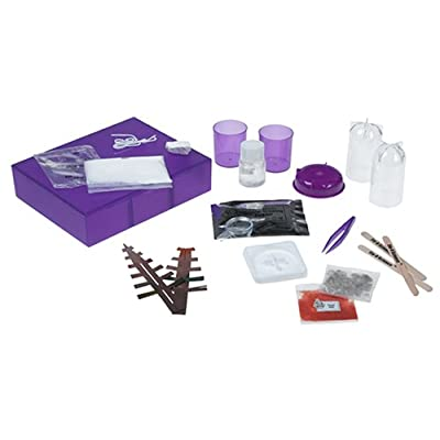 Crystal Growing: Professor Ein-O Crystal Science Kit: Toys & Games