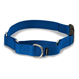 """PetSafe Martingale Collar with Quick Snap Buckle, 3/4"""" Small, Royal Blue"""