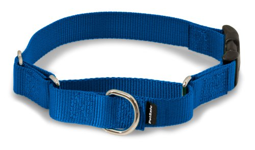 Small Buckle (PetSafe Martingale Collar with Quick Snap Buckle, 3/4