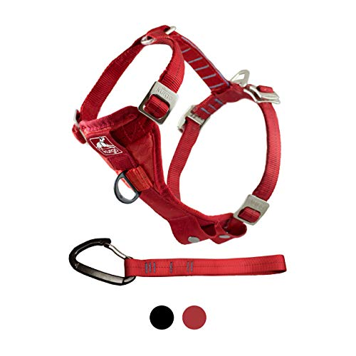 Kurgo Dog Harness | Car Harness for Dogs | Extra Large | Red | Pet Safety Seat Belt | Certified Crash Tested Harness | Car Seatbelt | Tru-Fit Enhanced Strength Style (Best Harness For Deep Chested Dogs)
