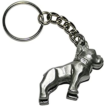 Amazon.com: Mack Trucks Enameled Retro Logo Keychain: Automotive