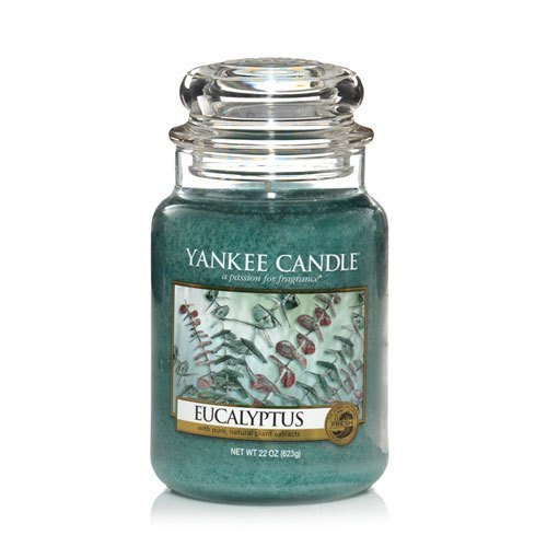 Yankee Candle Eucalyptus Large Jar Candle, 22-Ounce by Yankee Candle Company ()