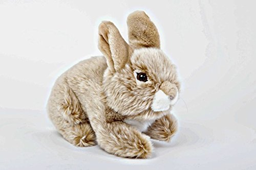 Rabbit Stuffed Plush Animal - Cabin Critters North American Wildlife Collection American Wildlife Collection