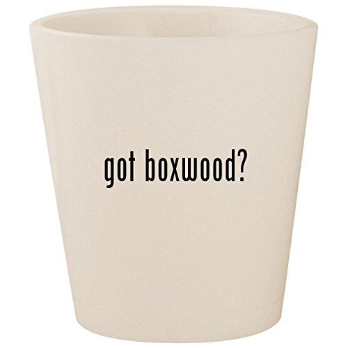 got boxwood? - White Ceramic 1.5oz Shot (Ivy Spiral Topiary)