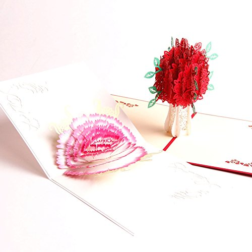 Paper Spiritz Carnations And Rose 3D Pop Up Card Kit Flowers Birthday Graduation Valentine's Day Congratulations Get Well Soon to Mom Grandma Card Thank You Anniversary (Pack of 2)