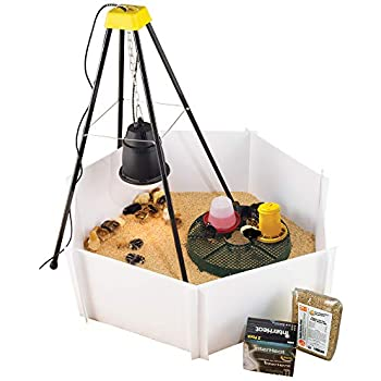 Amazon Com Premier Heat Lamp Brooder Kit For Up To 24 Chicks Garden Amp Outdoor