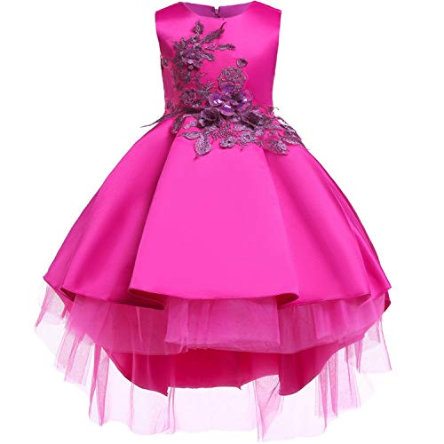 Baby Girls Infant Embroidery Dress Wedding Toddler High-end