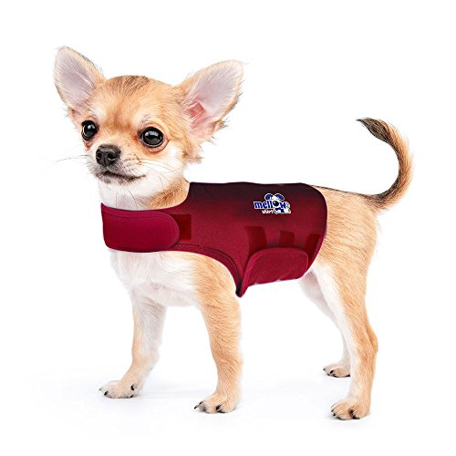 Mellow Shirt Dog Anxiety Calming Wrap, XX-Small, Sangria