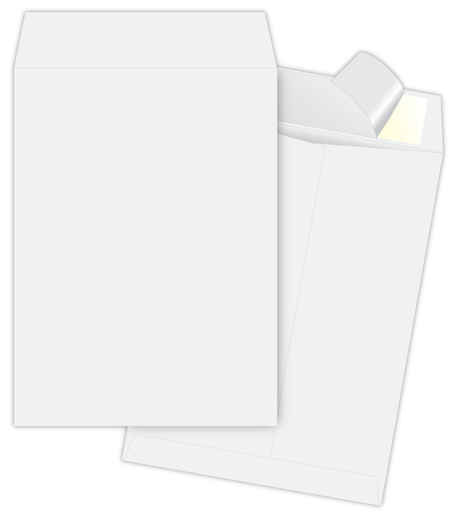 Quality Park Tyvek Jumbo Survivor Envelopes, 13 x 19 inches ( R5101)