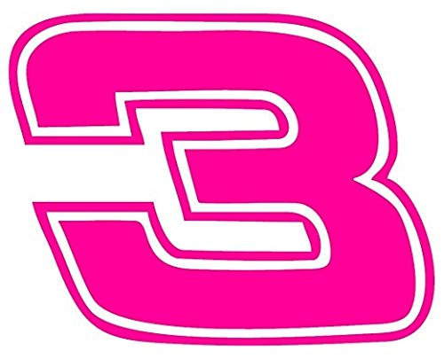 Dale Earnhardt 3 Car - Decal Flags USA Dale Earnhardt #3 - Neon Pink - Peel and Stick Sticker - Auto, Wall, Laptop, Cell, Truck Sticker for Windows, Cars, Trucks