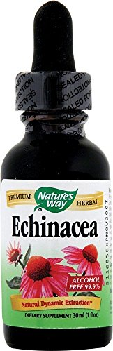 Echinacea Extract (alcohol free) Nature's Way 1 oz Liquid